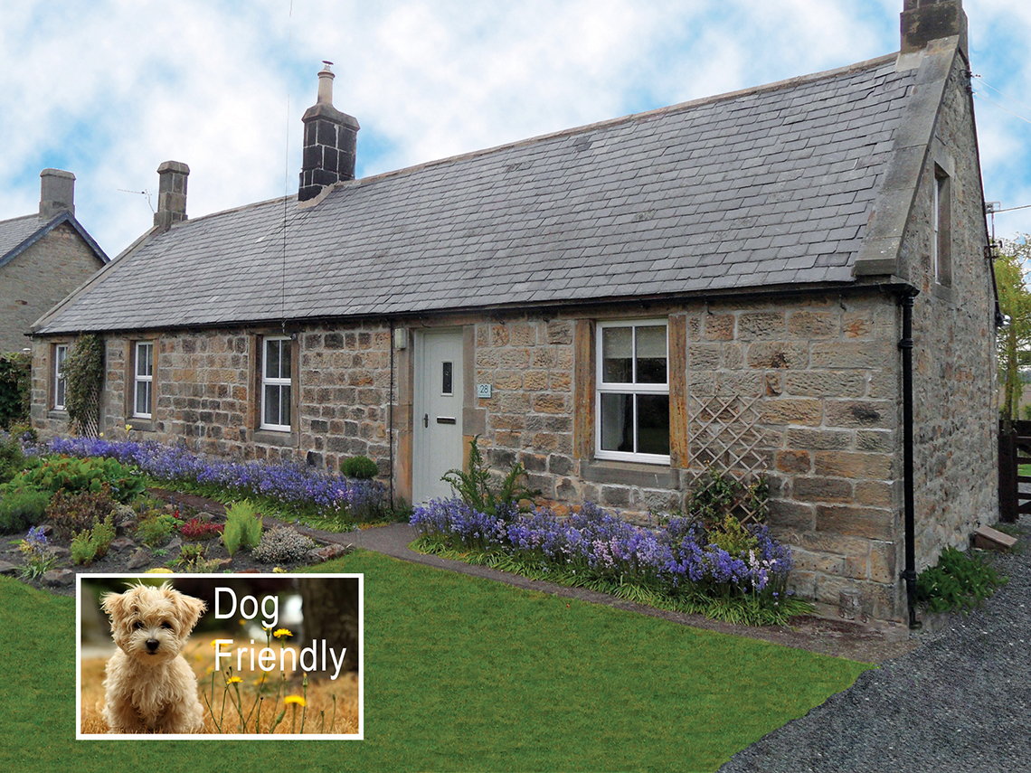 New Web front cottage pic with dogSMALL